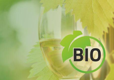 Biologische wijn - een overzicht